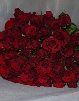 Red roses 50cm
