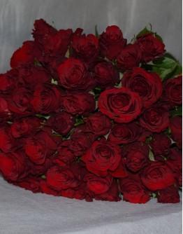 Red roses 50cm