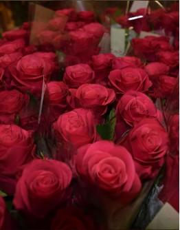 Deep pink roses 60cm