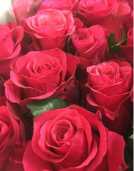 Deep pink roses 70cm