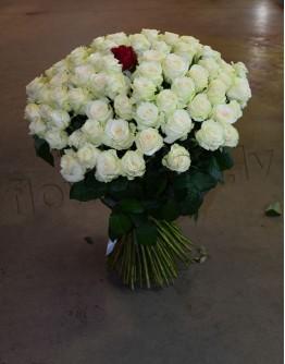 White roses 80cm