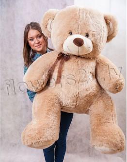 Teddy bear 150cm