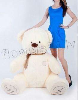 Teddy bear 180cm