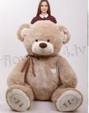 Teddy bear 240cm