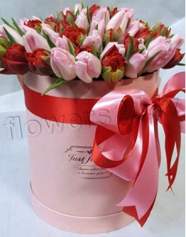 Tulips in box (51 piece)